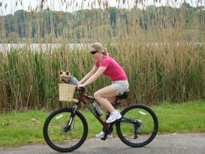 Woman with dog on bike for dog socialization