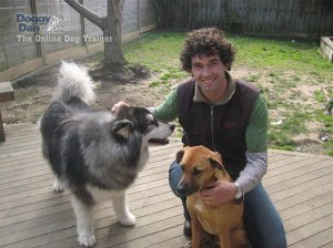 Doggie Dan with two of his dogs.