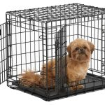 Ultima Pro dog crate with little dog