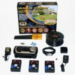 electric fence system for blind dogs