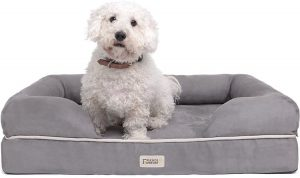 An orthopedic bed is part of arthritis treatment for dogs.