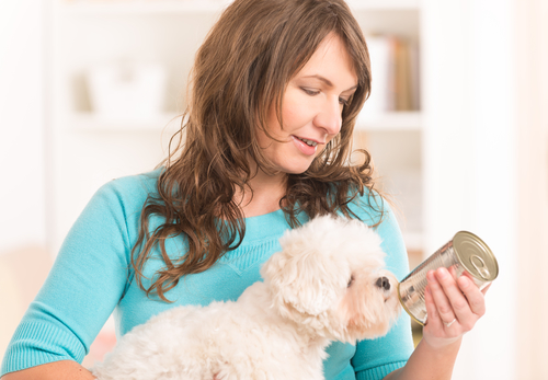 Woman choosing senior dog food with her Bichon Frise