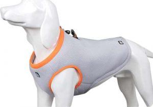 SGODA cooling jacket for a dog