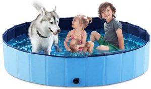 2 children and a dog in a dog pool to get cool