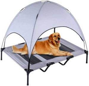 Dog on elevated bed with canopy, so that he is shaded