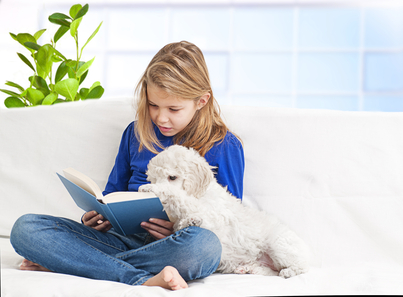 little girl reading to her Bichon Frise dog